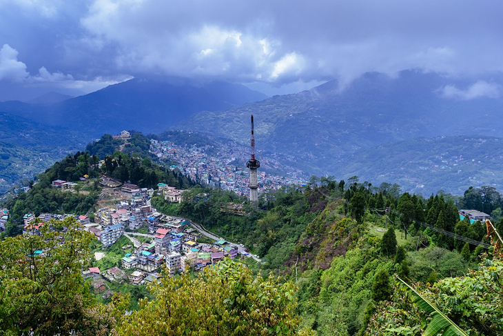 Enjoy the best of Sikkim Flora and Fauna in your Honeymoon Trip